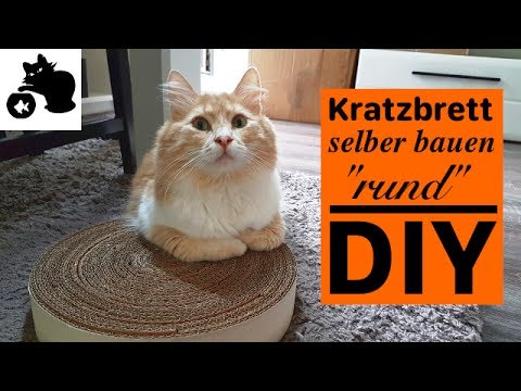 katzen kratzbrett selber bauen rund diy katzenspielzeug selber machen kratzbrett aus. Black Bedroom Furniture Sets. Home Design Ideas