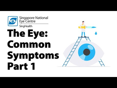 common-eye-symptoms-(part-1):-blurred-vision,-cloudy-vision,-glare-and-more