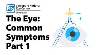 Blurred vision, cloudy vision, halos and glare. Find out what are the possible causes of these common eye problems.