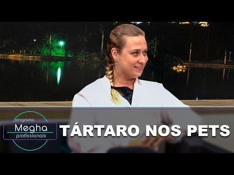 Tártaro Nos Animais De Estimação | Dra. Luciana Rosa Da Fonseca | Pgm Megha Profissionais N°630
