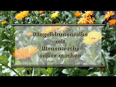 Super Ringelblumensalbe mit Bienenwachs selber machen - YouTube DD97