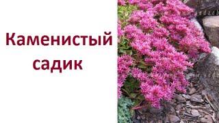 видео Каменистый сад