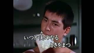 渡哲也 - みちづれ