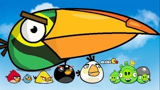 Naughty Angry Birds (Stella & Hal) Vs Bad Piggies Gameplay Walkthrough Part 5