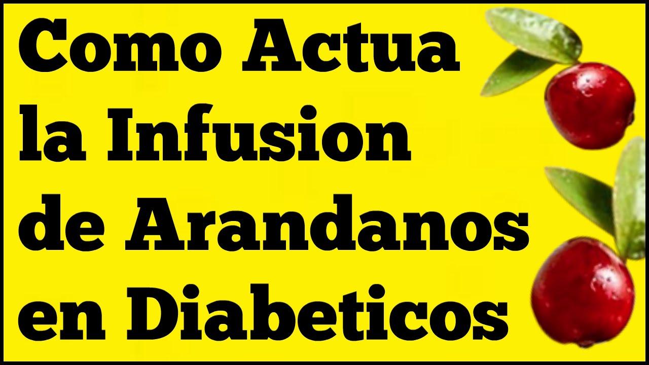 Como Actua la Infusion de Arandanos en los Diabeticos
