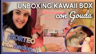 ¡Calcetines de borreguito y galletas panda!   UNBOXING Kawaii Box con Gouda