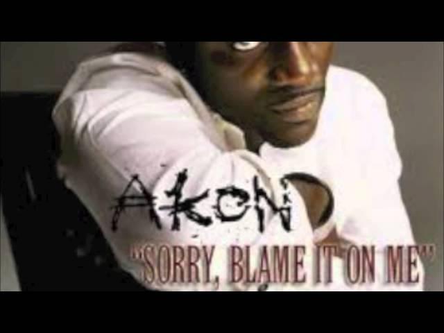 Akon Sorry, Blame It On Me