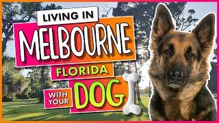 Melbourne Florida 🐕 Dog Parks 🐕🦺 Beaches 🦮 Dog-friendly Restaurants 🐩 Dog Resorts
