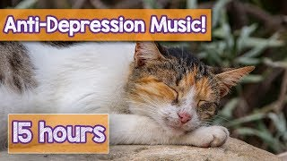 NEW Soothing Music for Depressed Cats and Kittens! Music to Calm Cat Separation Anxiety & Depression