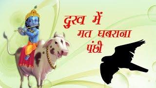 बहुत ही आनंदमयी भजन // दुःख मै मत घबराना पंछी // Dukh Me Mat Ghabrana Panchi