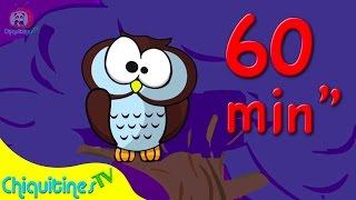 La Lechuza hace shh - 60 Minutos - Canción Infantil