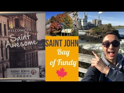 Welcome To SAINT JOHN, New Brunswick Cruise Port L CRUISE VLOG L Ep. 23