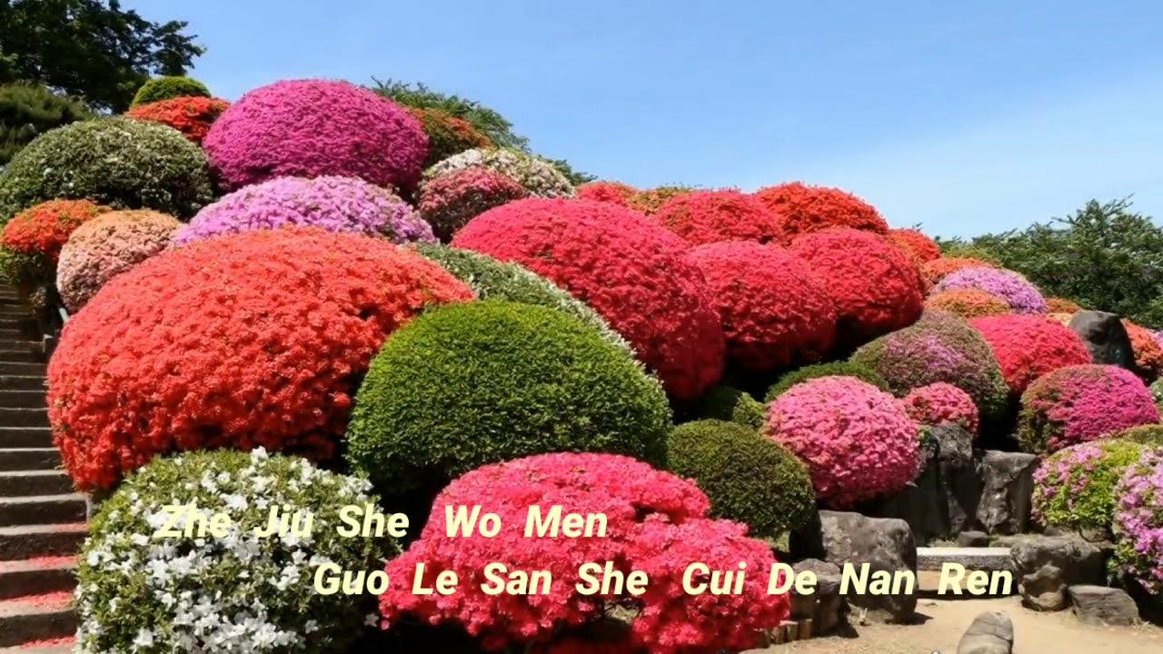 Nan  Ren   Hua - Liryc