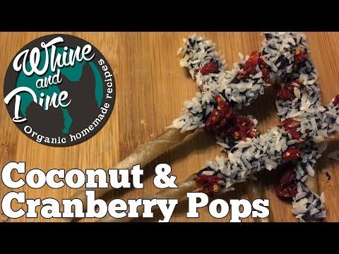 coconut-and-cranberry-sticks- -homemade-christmas-dog-pops
