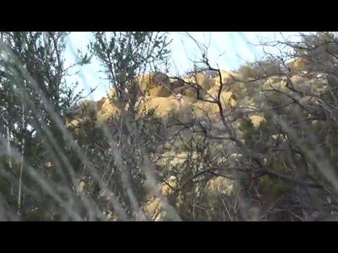 Idria California San Benito Benitoite Mining Area Claim For Sale