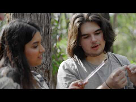 Hear about Griffith University from international students