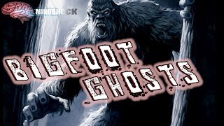 BIGFOOT GHOSTS - IS SASQUATCH A GHOST? (Mindshock Podcast)