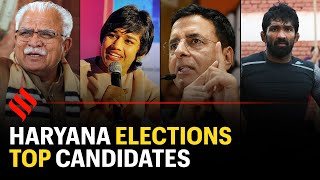 Haryana election: Here are the top candidates