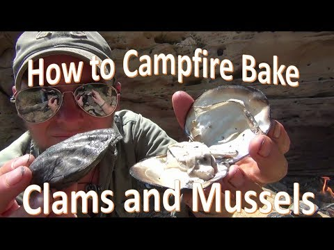 "How to Campfire Cook Mussels and Clams ""Bake"""