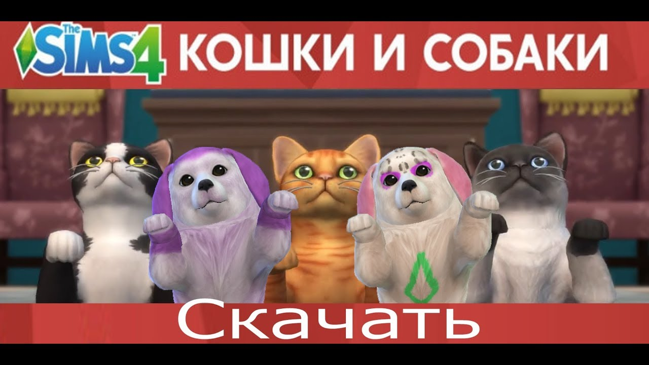 Симс4 Скачать Кошки и собаки - YouTube
