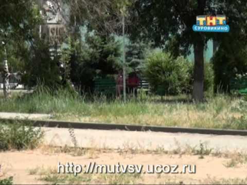 Погода в Суровикино на День города