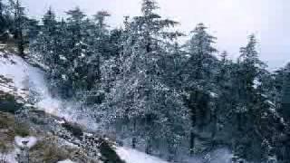 afară ninge liniştit
