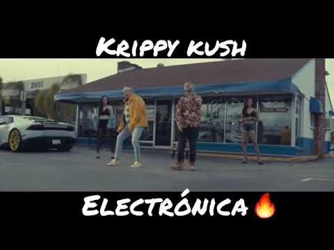 Krippy kush (electrónica)