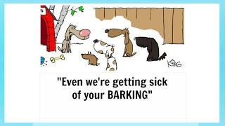 How To Stop A Dog Barking   Highly Effective, Super Simple Method To Stop Dog Barking