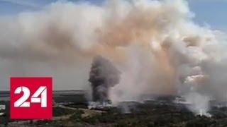 В Чернобыльской зоне отчуждения борются с сильным лесным пожаром - Россия 24