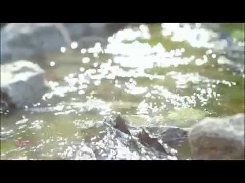 Apink- Wishlist Official MV