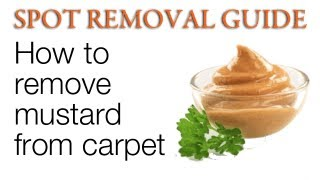How to remove mustard stains from Carpet | Spot Removal Guide