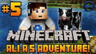 Minecraft - Ali-A's Adventure #5! -