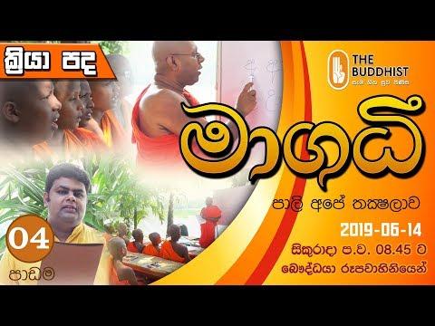 Maagadhi - මාගධී (පාලි අපේ තක්ෂලාව) | 2019-06-14 | 8.45 PM