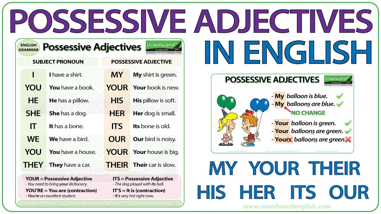 Possessive Adjectives In English  Grammar Lesson  Youtube