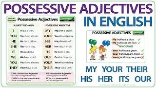 Possessive Adjectives in English Grammar Lesson