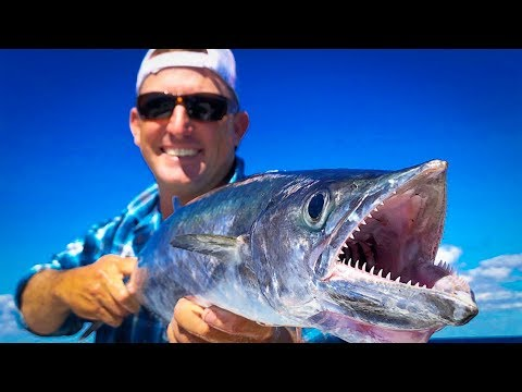 KINGFISH {Catch Clean Cook} Blackened Rudder Fish with Wild Fruit Salsa