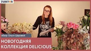 Коллекция Delicious. Обзор зимнего ассортимента цветов с Ольгой Шаровой