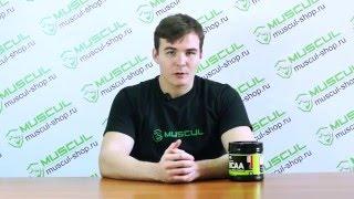optimum Nutrition BCAA 5000 Powder - Описание, применение, отзывы. Аминокислоты