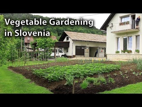 The Attitude of Vegetable Gardening in Slovenia is an Inspiration