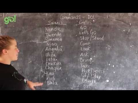 Video #20 - GO! presents: BEST Swahili Tutorials - COMMANDS - DO! (live from Tanzania)