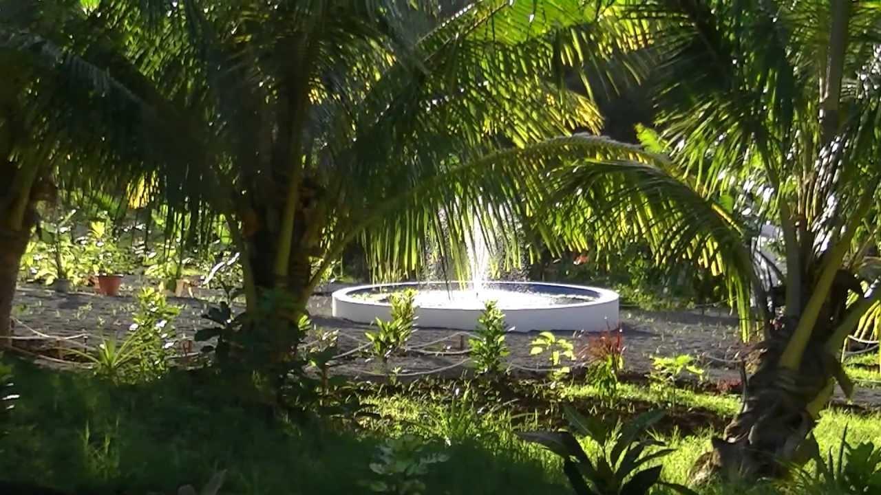 Rodrigues jardin des 5 sens 3 youtube for Jardin 5 sens guadeloupe
