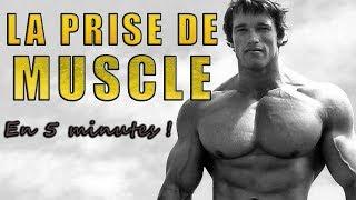 La PRISE DE MUSCLE (en 5 minutes)