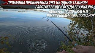 ПРИМАНКА ПРОВЕРЕННАЯ УЖЕ НЕ ОДНИМ СЕЗОНОМ!!! Ловля хищника в октябре. Рыбалка на спиннинг 2019