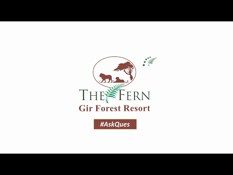 Things to Know about Gir Forest - Words From Local Guide