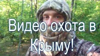 Видео охота в Крымских лесах!(Видео охота в Крымских лесах! Лабаз, видео охота с вышки, Крымские леса, дубак на улице, встреча с охотоведом,..., 2016-05-27T17:53:47.000Z)