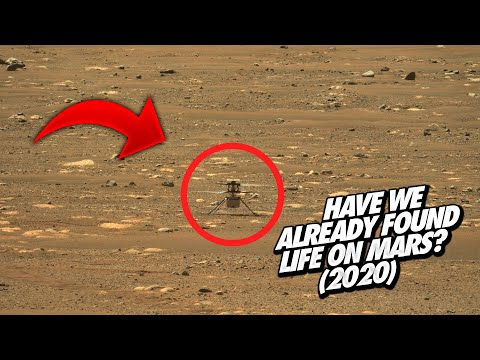 Have We Already Found Life On Mars? (2020)