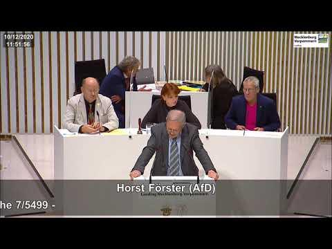 Horst Förster: Terrorismus bekämpfen - nach Syrien abschieben!