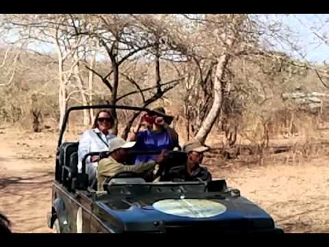 Abroad tourist visit gir