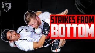 MMA Striking from Your Back: Strategies & Drills