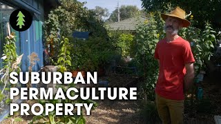 Family Transforms Tiny Suburban Backyard into Thriving Permaculture Gardens – Abdallah House Tour